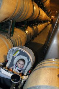 Napa Valley with Kids | Bottles & Banter